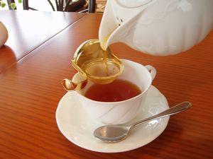 茶園から届いた春の新茶!